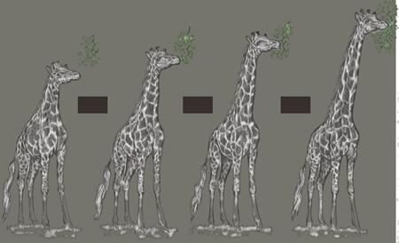 Teoria de la Evolucion Sintetica Evolución Por Uso la Teoría